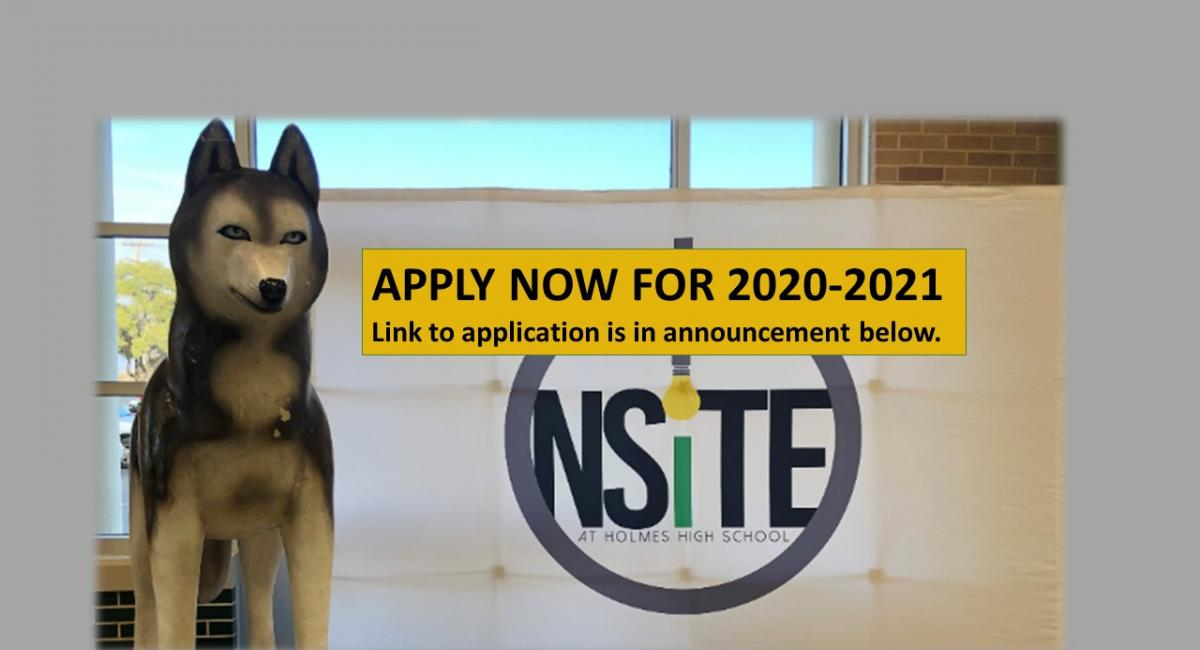 Husky statue and Nsite logo- apply now for 2020
