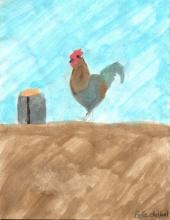 Drawing by Kuentz Student of a Rooster