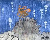 Drawing by a Kuentz Student of an Aquarium with a Octopus